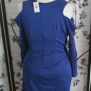 Ashley Stewart Dresses - Spanking brand new in my closet with tags